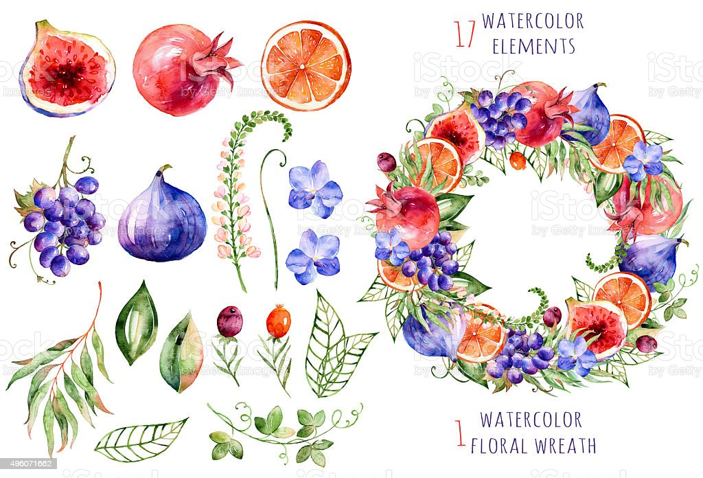 Colorful floral and fruits collection vector art illustration