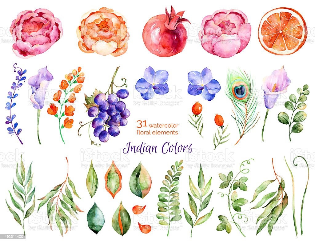 Colorful floral collection vector art illustration