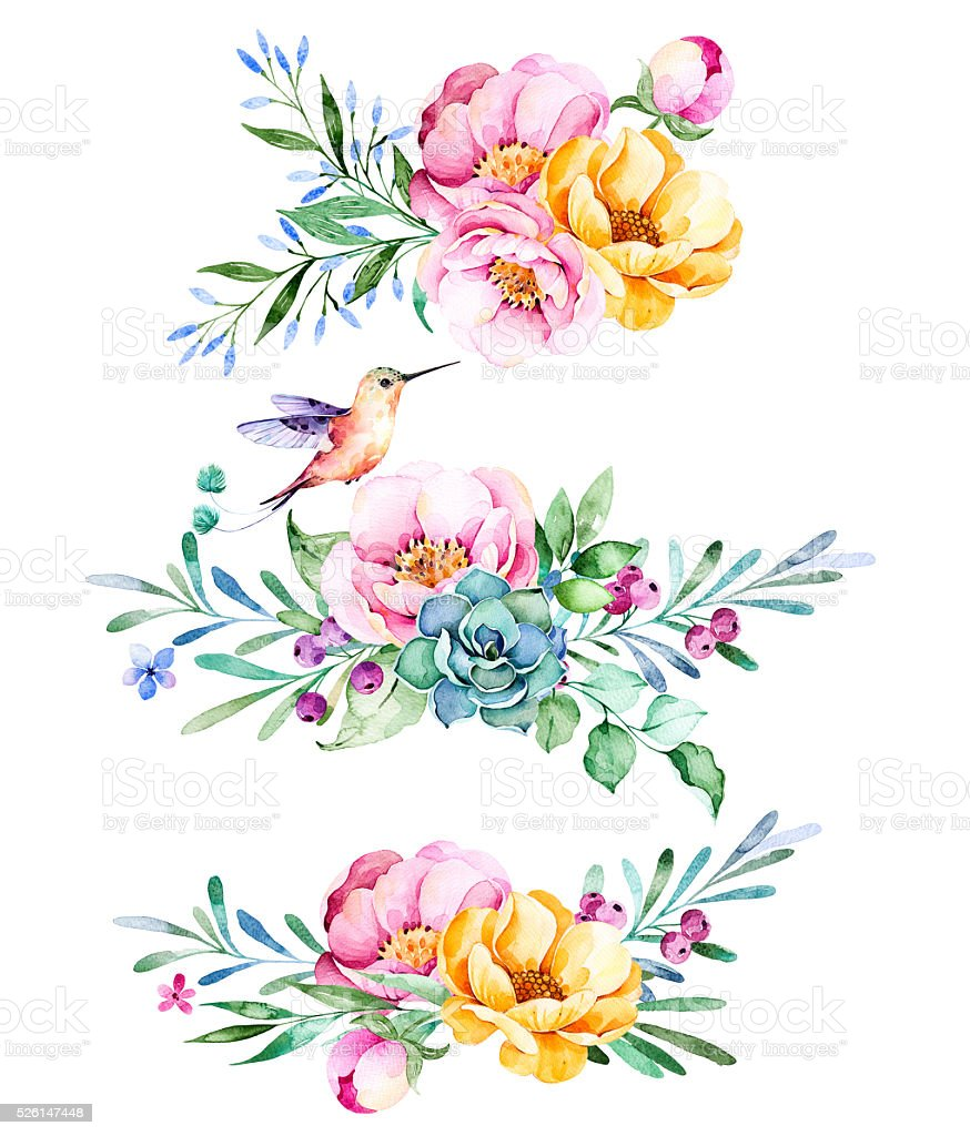Colorful floral collection with roses,flowers,leaves,succulent plant vector art illustration