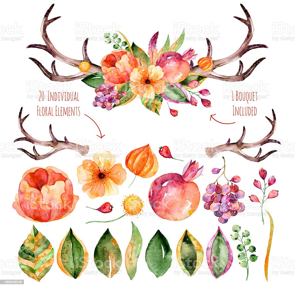 Colorful purple floral collection with leaves,horns and flowers vector art illustration