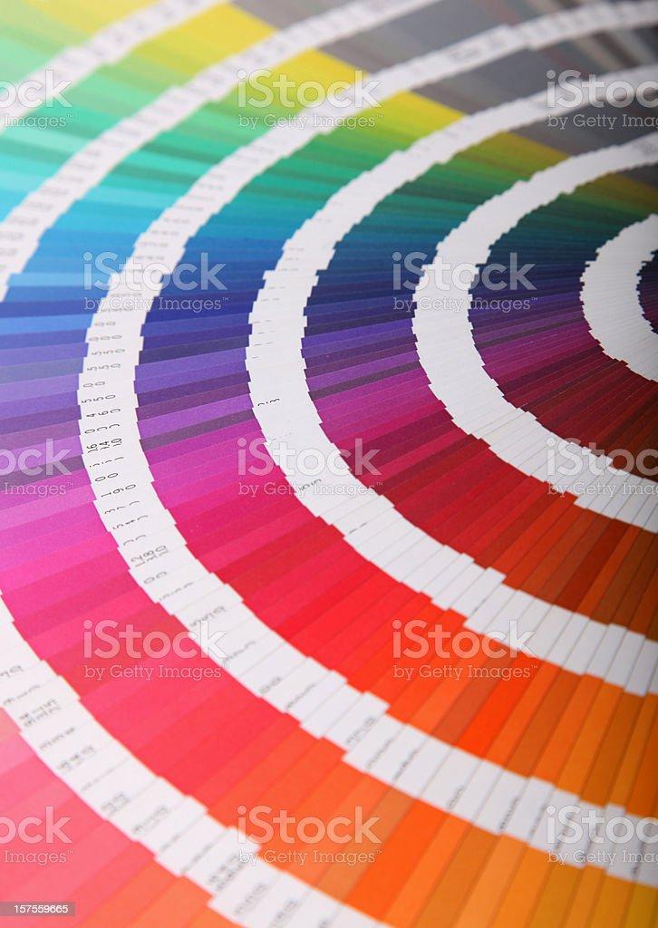 Colour guide - pantone swatch book vector art illustration