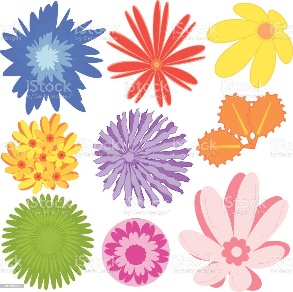 Colour Plants 01 (Vector) royalty-free stock vector art