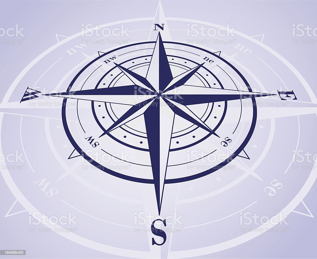 Compass rose with reflection. Vector illustration royalty-free stock vector art