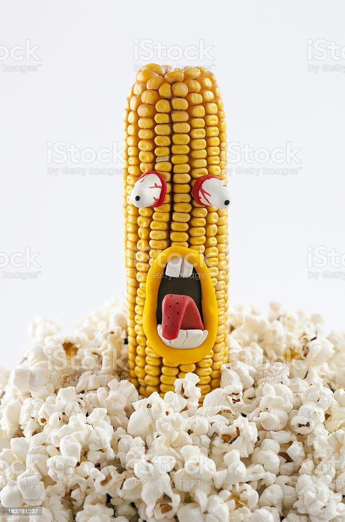 Corn vector art illustration