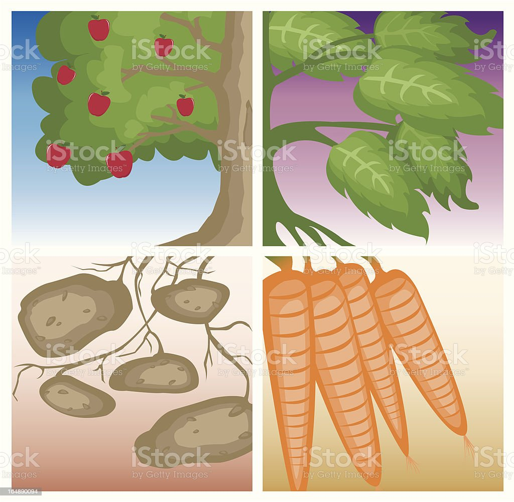 Country Roots royalty-free stock vector art