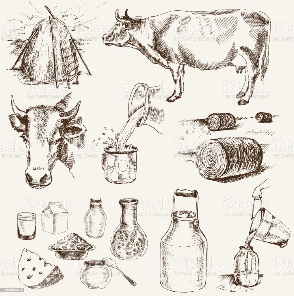 cow and milk products vector art illustration
