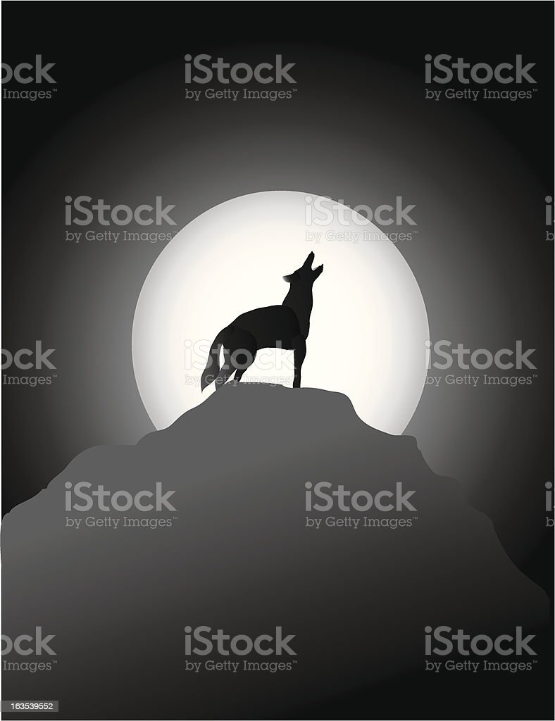 Coyote Howling at the Moon royalty-free stock vector art