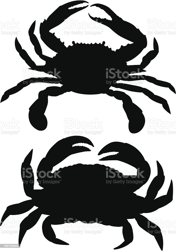 Crabs vector art illustration