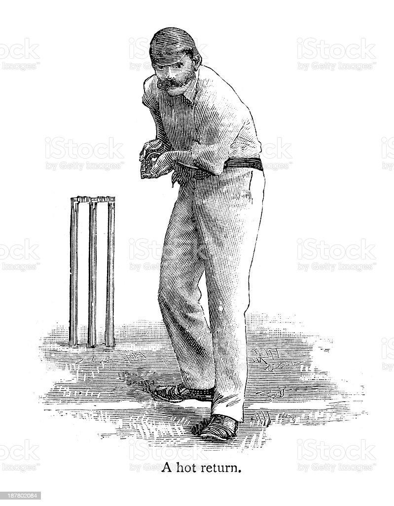 Cricket - Bowler royalty-free stock vector art