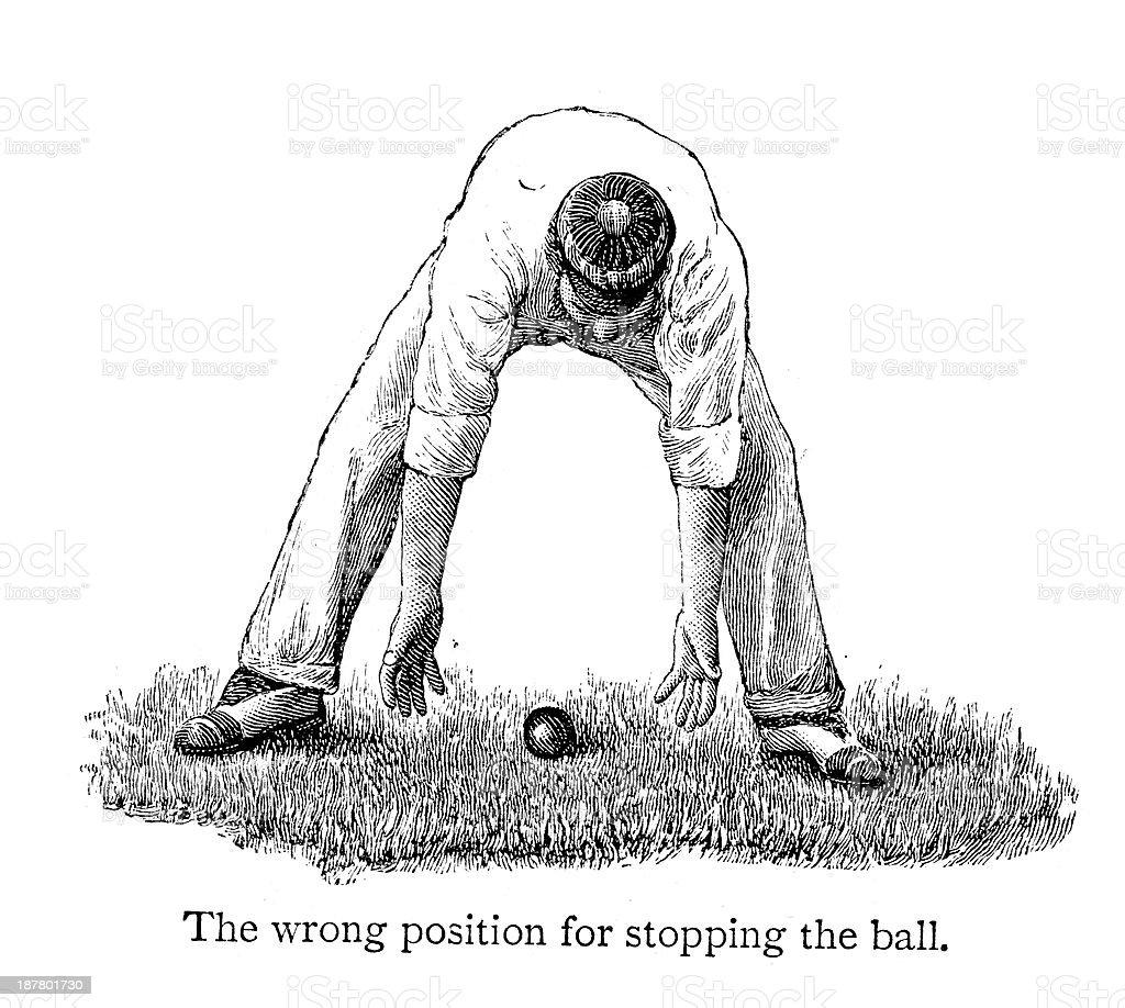 Cricket - Fielder vector art illustration