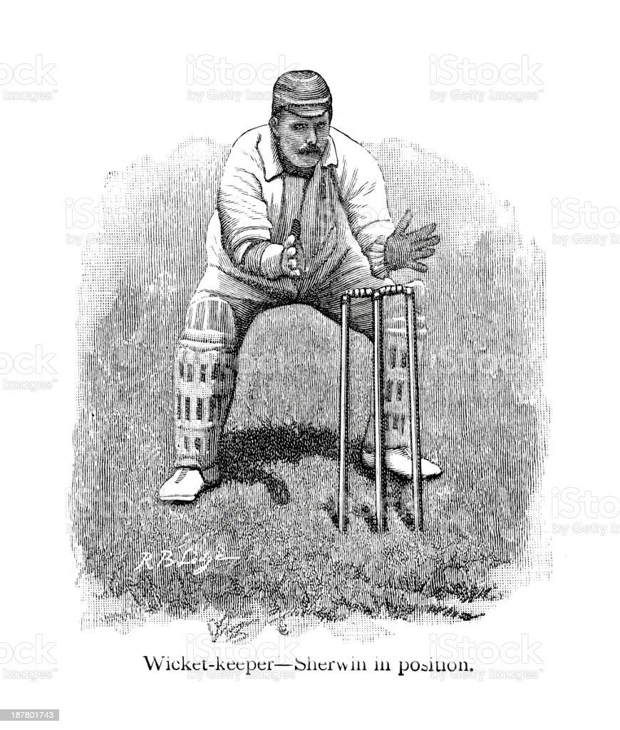 Cricket - Wicketkeeper royalty-free stock vector art