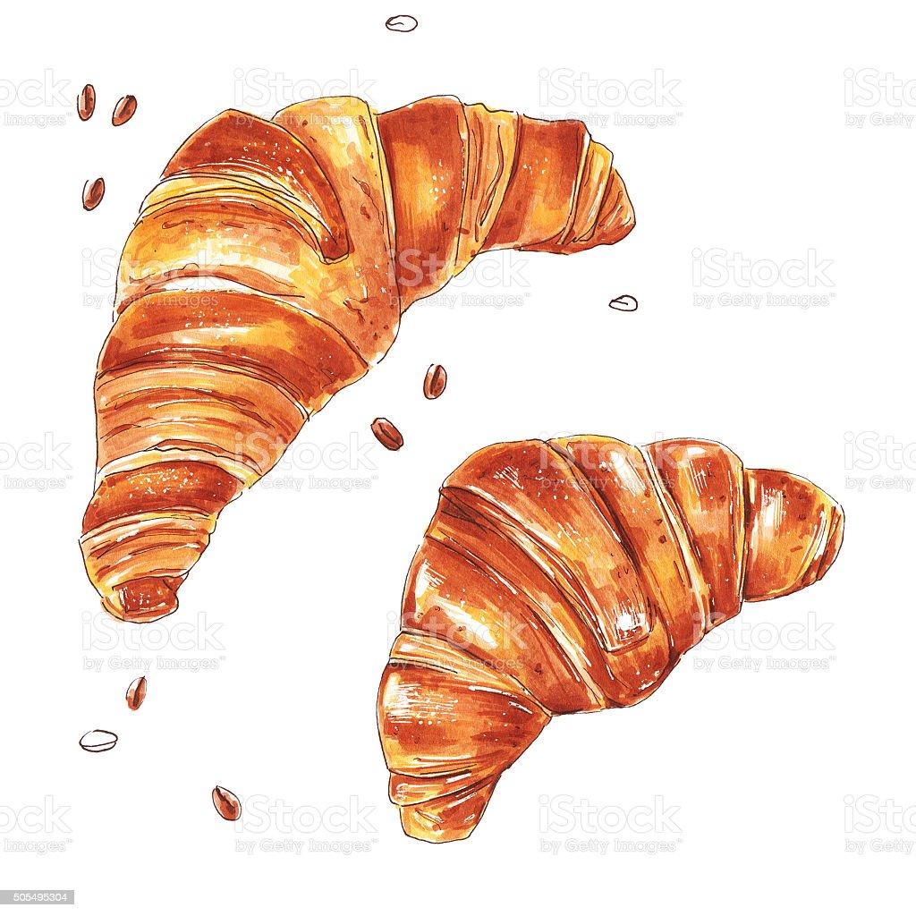 Croissant isolated on white background vector art illustration