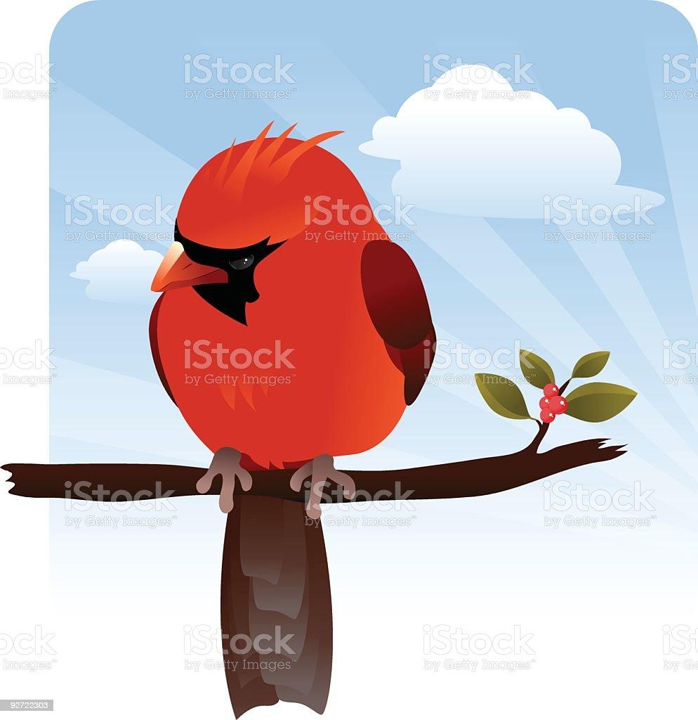Curious Cardinal royalty-free stock vector art