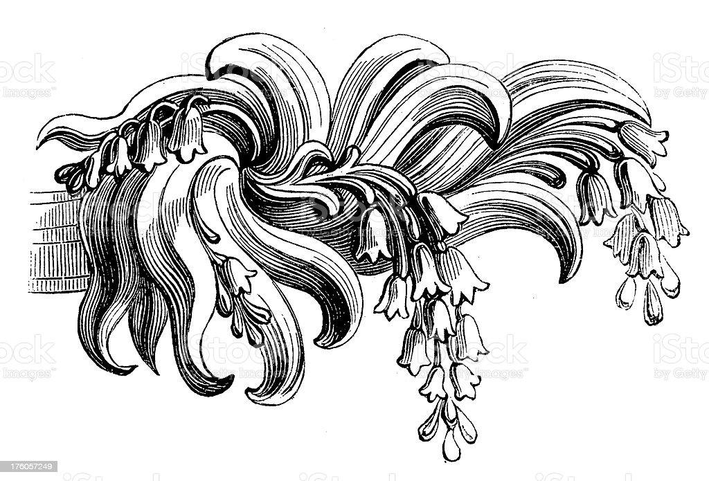 Curtain Rod Finial | Antique Design Illustrations royalty-free stock vector art
