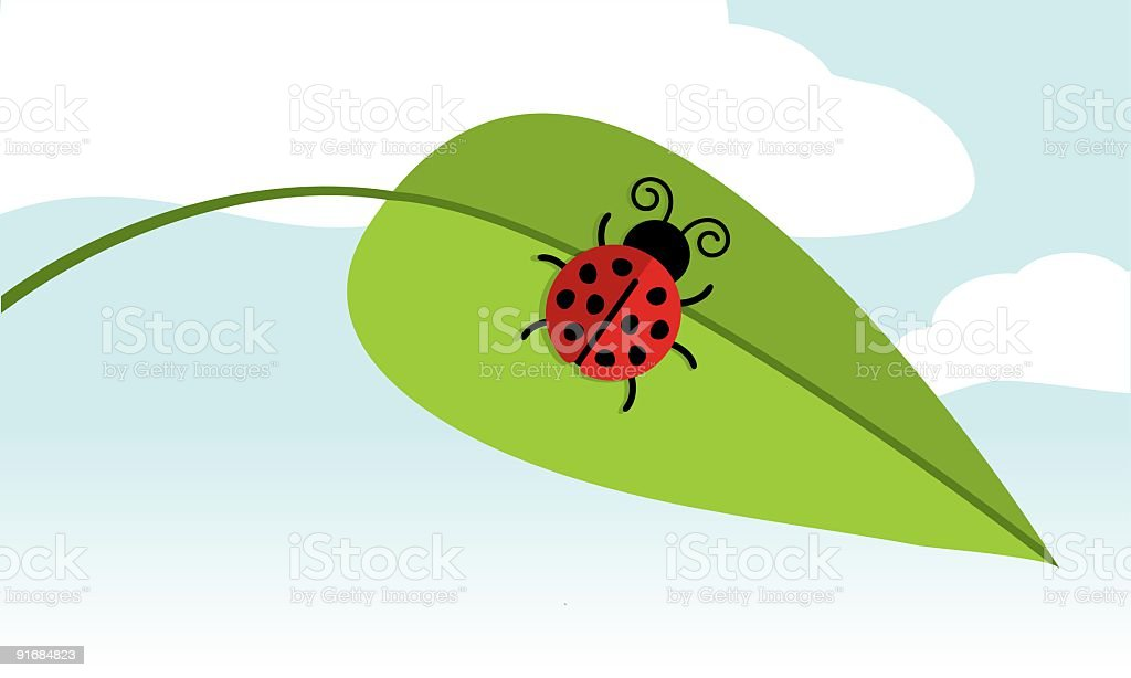 Cute Ladybug on Leaf royalty-free stock vector art