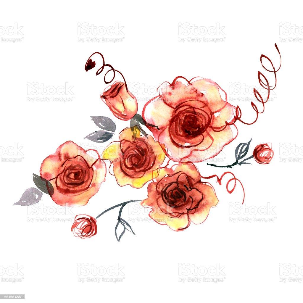 Cute watercolor hand painted orange roses vector art illustration
