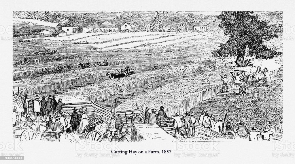 Cutting Hay on a Farm, Early Americans Engraving, 1857 vector art illustration