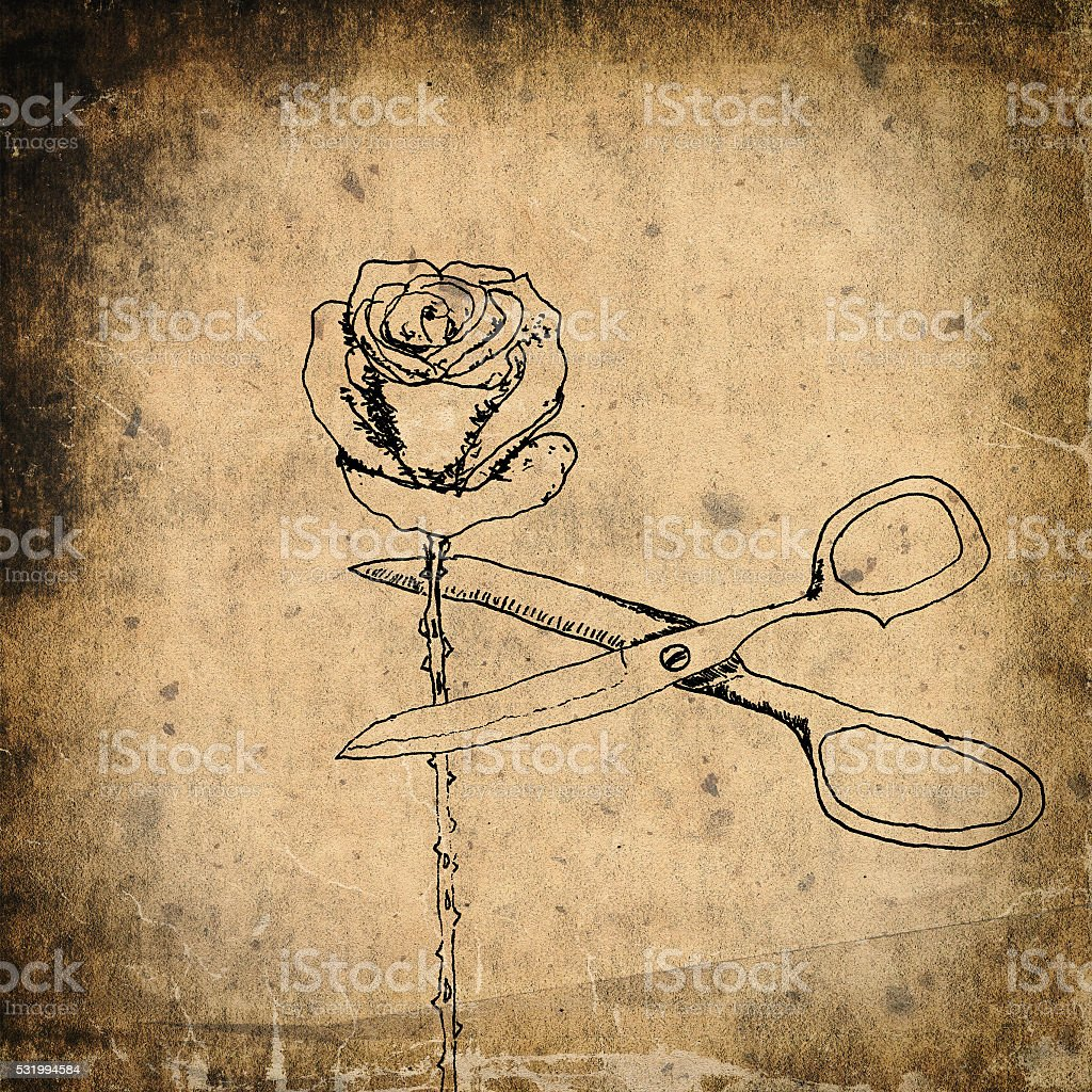 Cutting the rose, pen and ink drawing stock photo