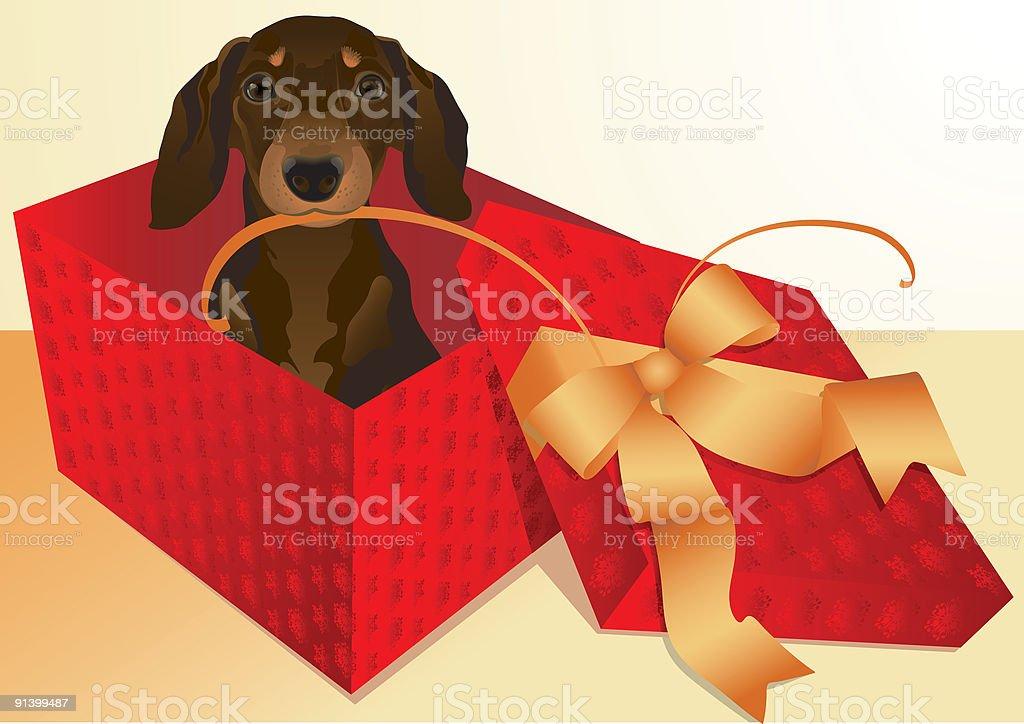 dachshund royalty-free stock vector art