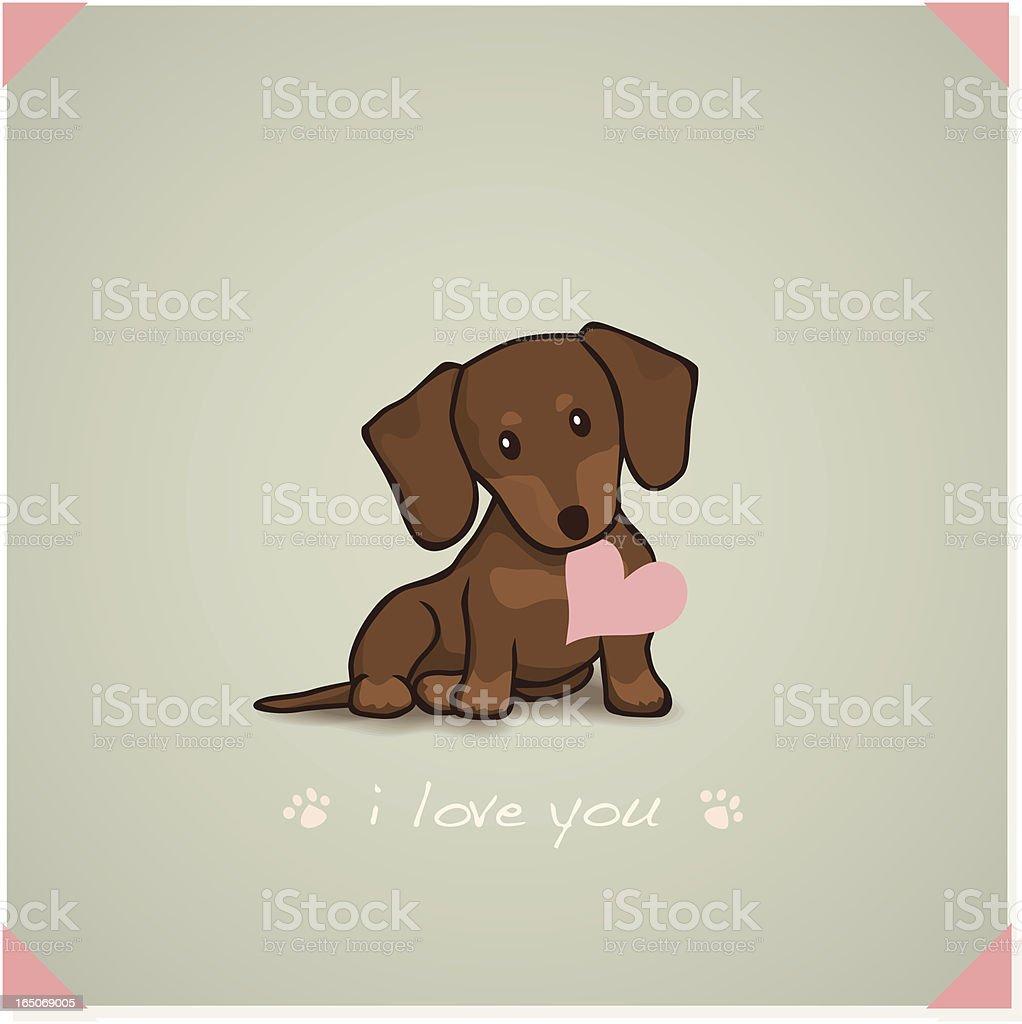 Dachshund Puppy royalty-free stock vector art