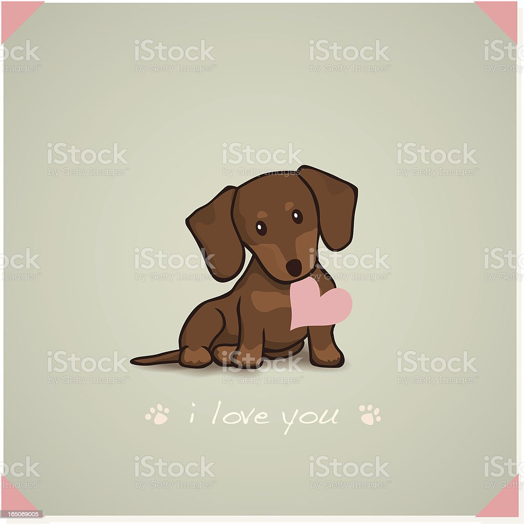 Dachshund Puppy vector art illustration