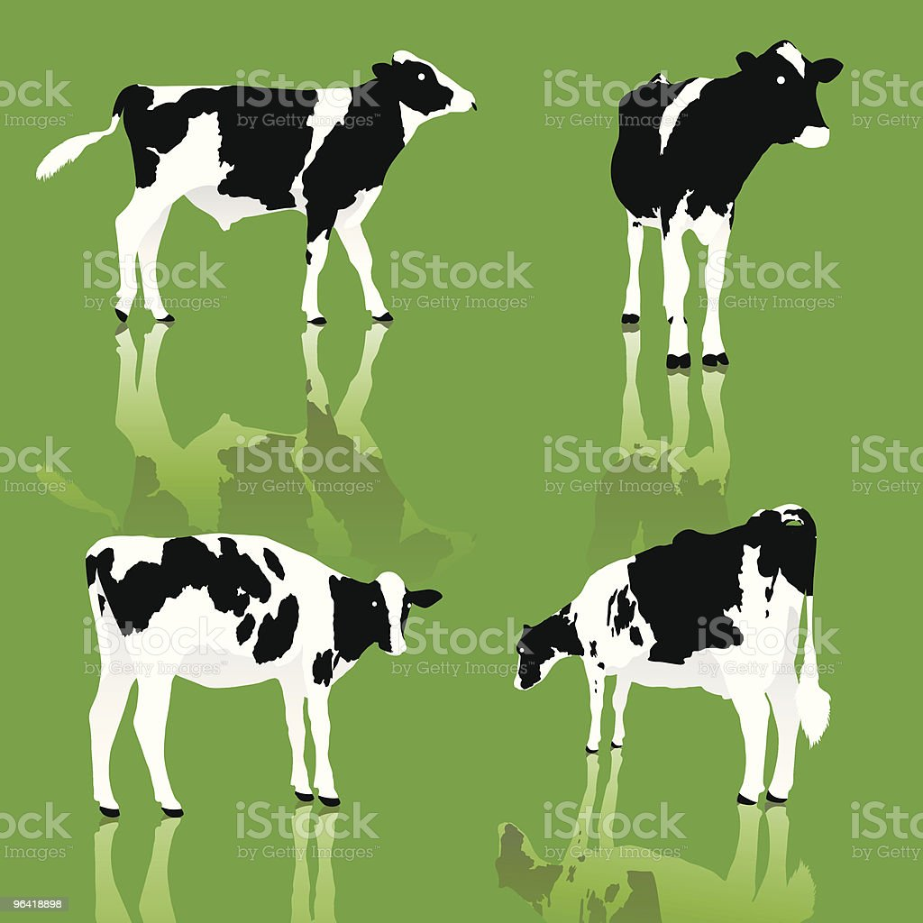 Dairy Cows vector art illustration