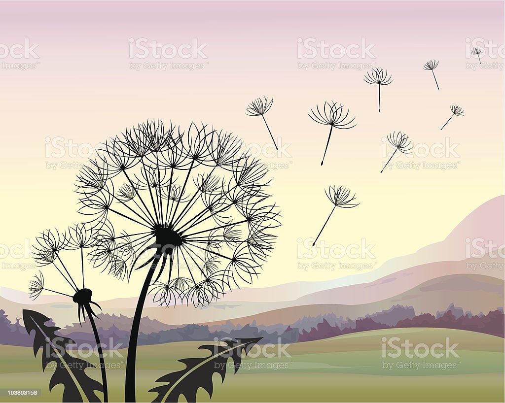 Dandelion 2 royalty-free stock vector art