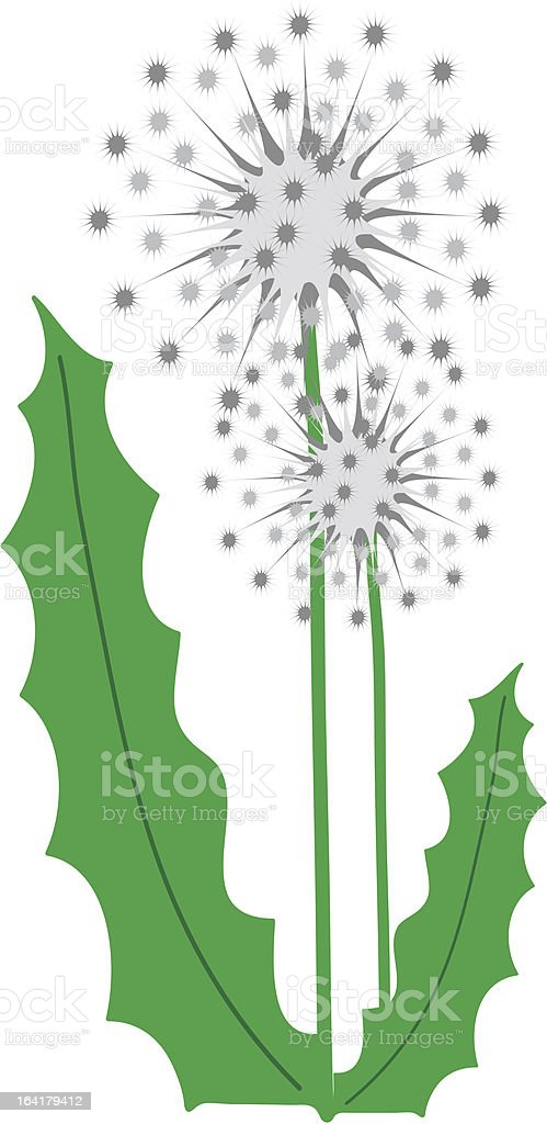Dandelions royalty-free stock vector art