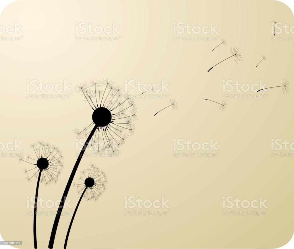 Dandelions. vector art illustration