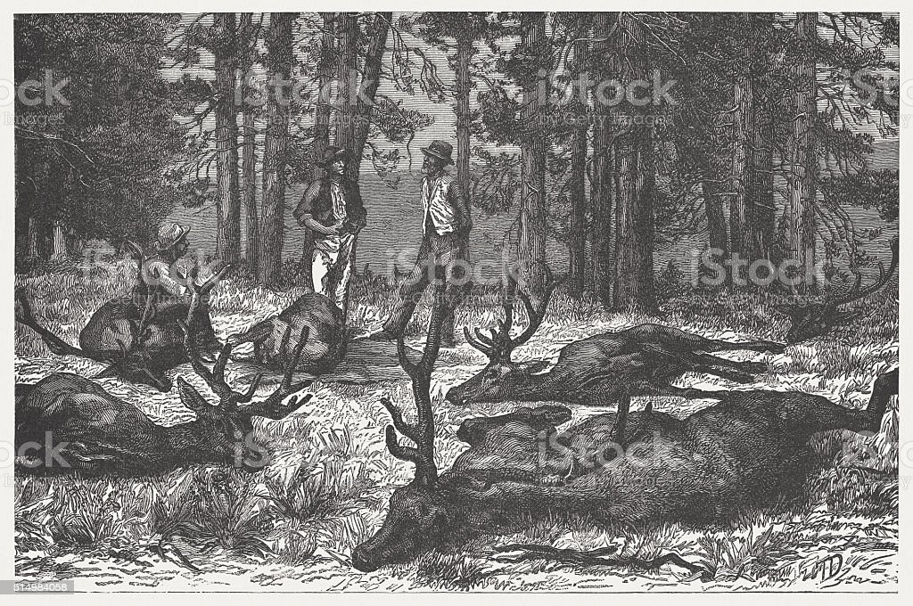 Deer hunting in the Rocky Mountains, wood engraving, published 1880 vector art illustration