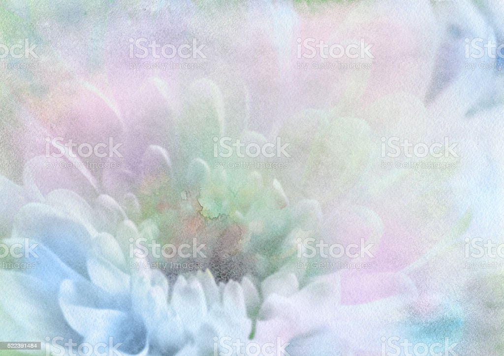 delicate petals, watercolor background vector art illustration