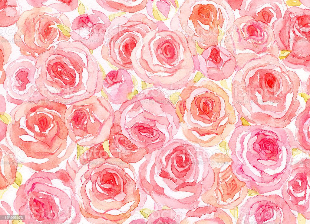 Delicate watercolor roses vector art illustration