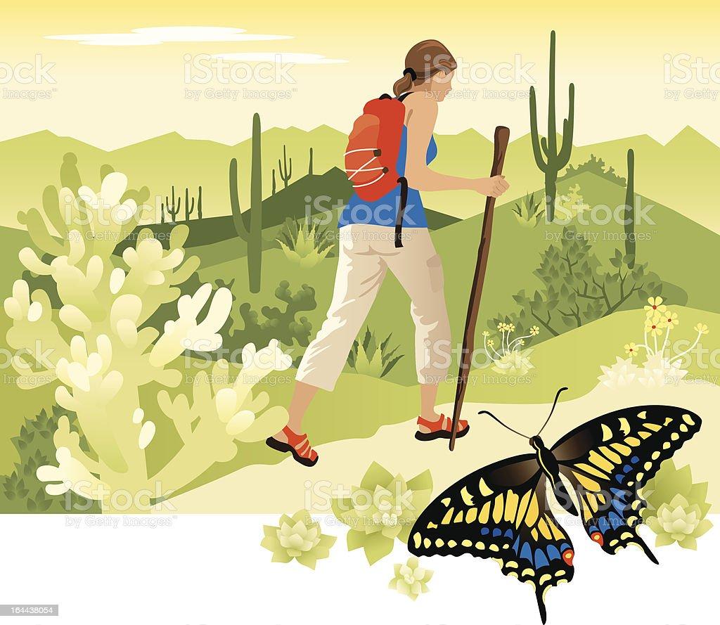 Desert Hiking vector art illustration