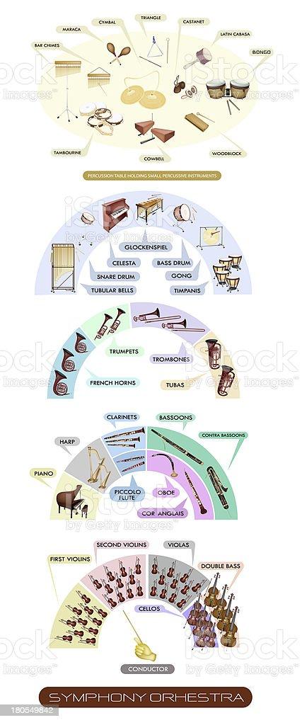 Diagram of Musical Instrument for Symphonic Band vector art illustration