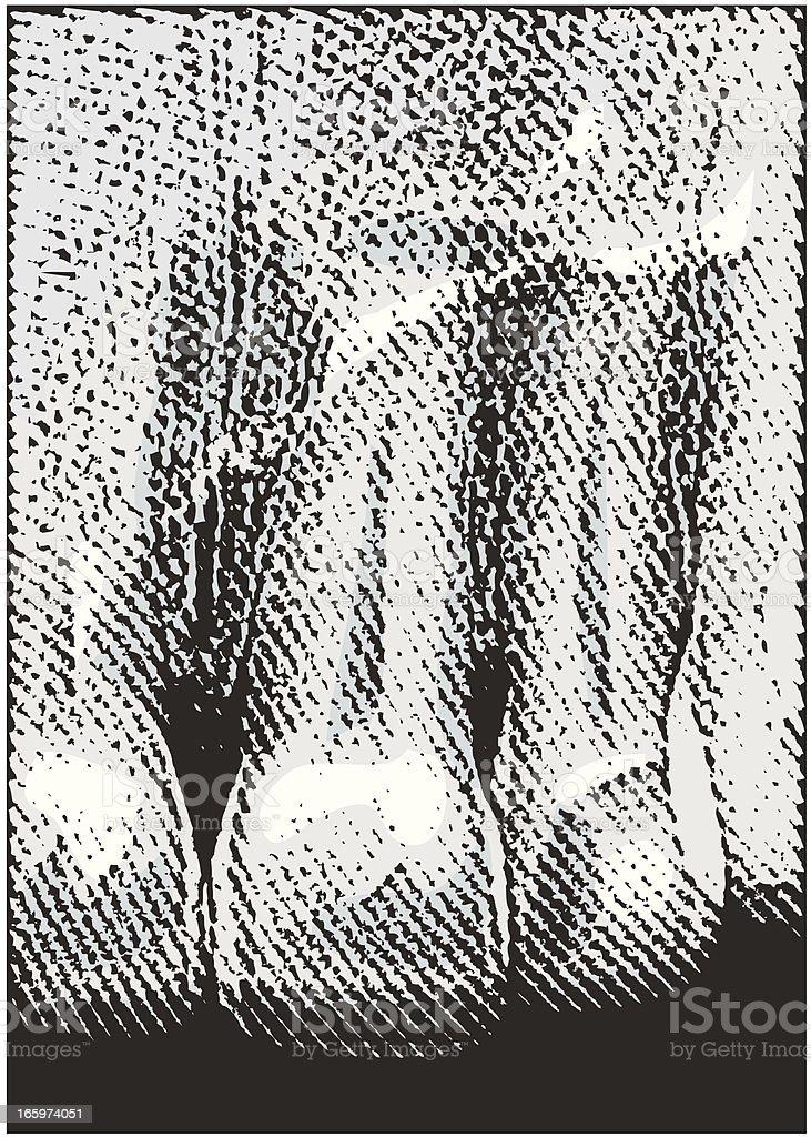 Digital Dental X-Ray of Teeth. royalty-free stock vector art