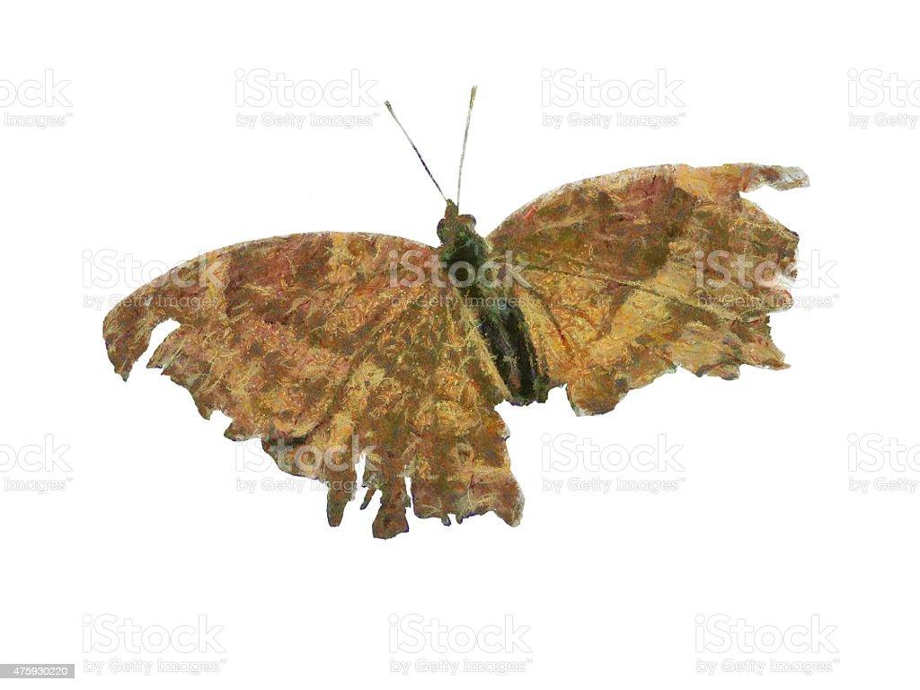 digital paint butterfly vector art illustration