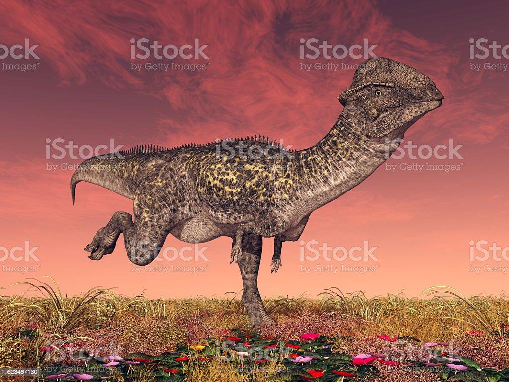 Dinosaur Stegoceras vector art illustration