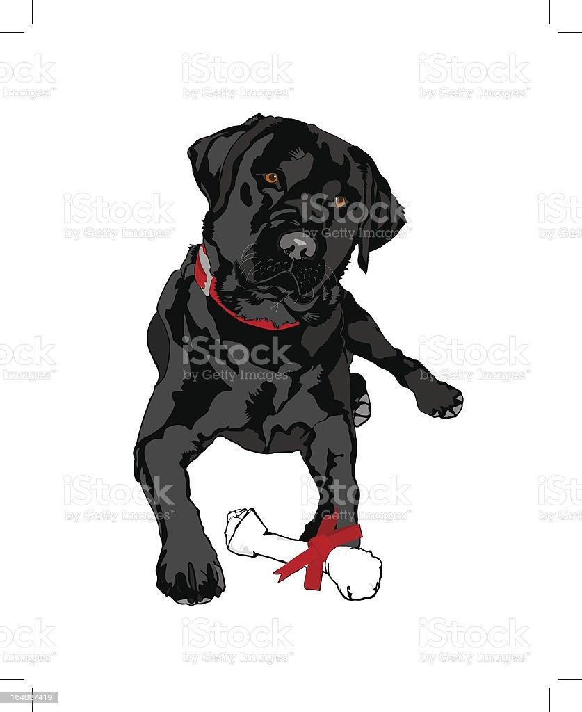 Do you want a treat? vector art illustration