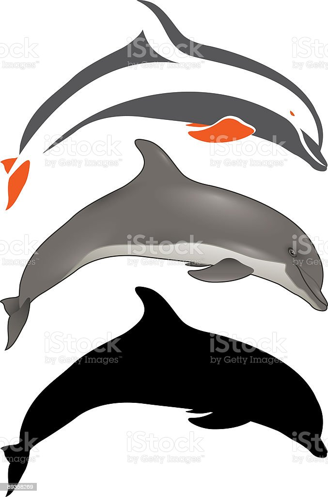 Dolphin royalty-free stock vector art