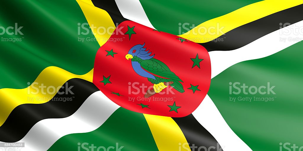 Dominican flag. royalty-free stock vector art
