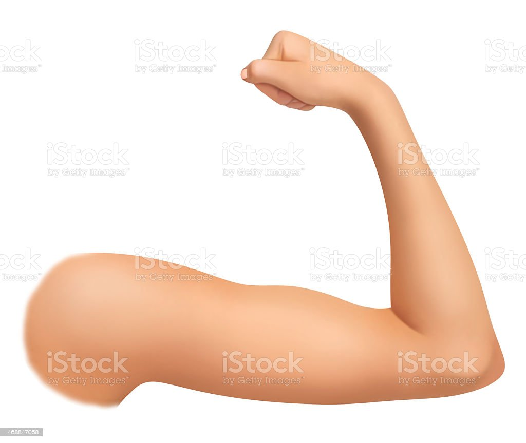 DorsalUpperLimb3 stock photo