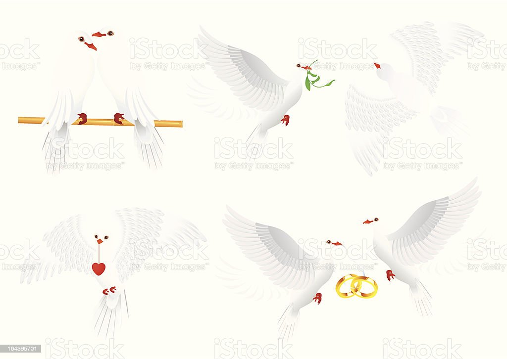 Dove collection royalty-free stock vector art