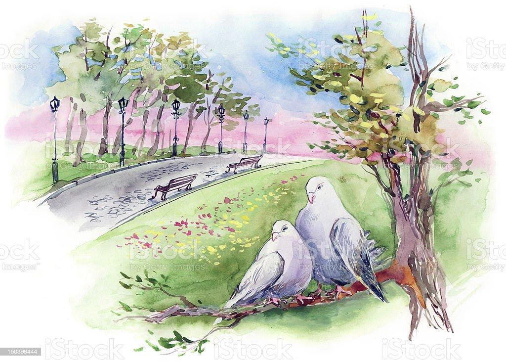 doves couple vector art illustration