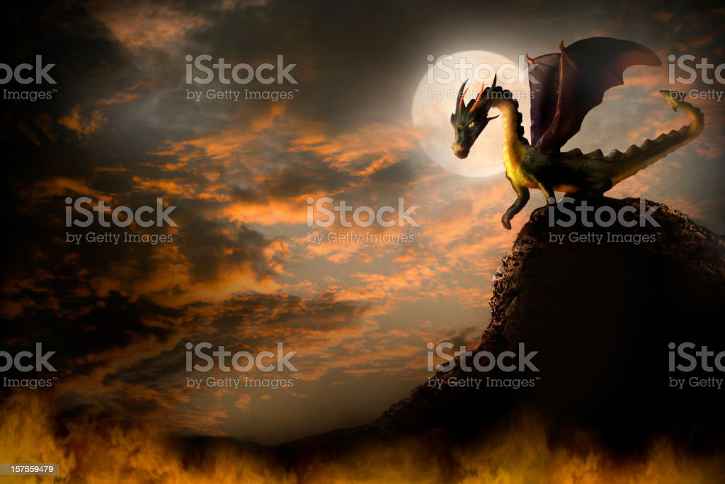 dragon on a rock. vector art illustration