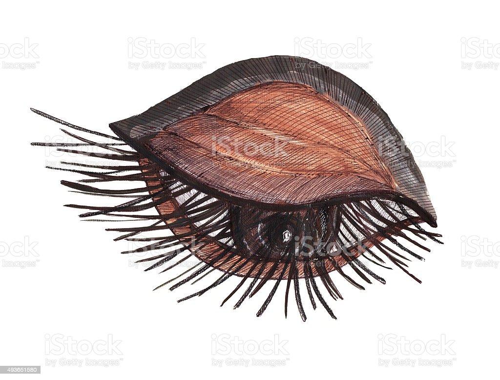 Drawn eye.Graphic style. vector art illustration