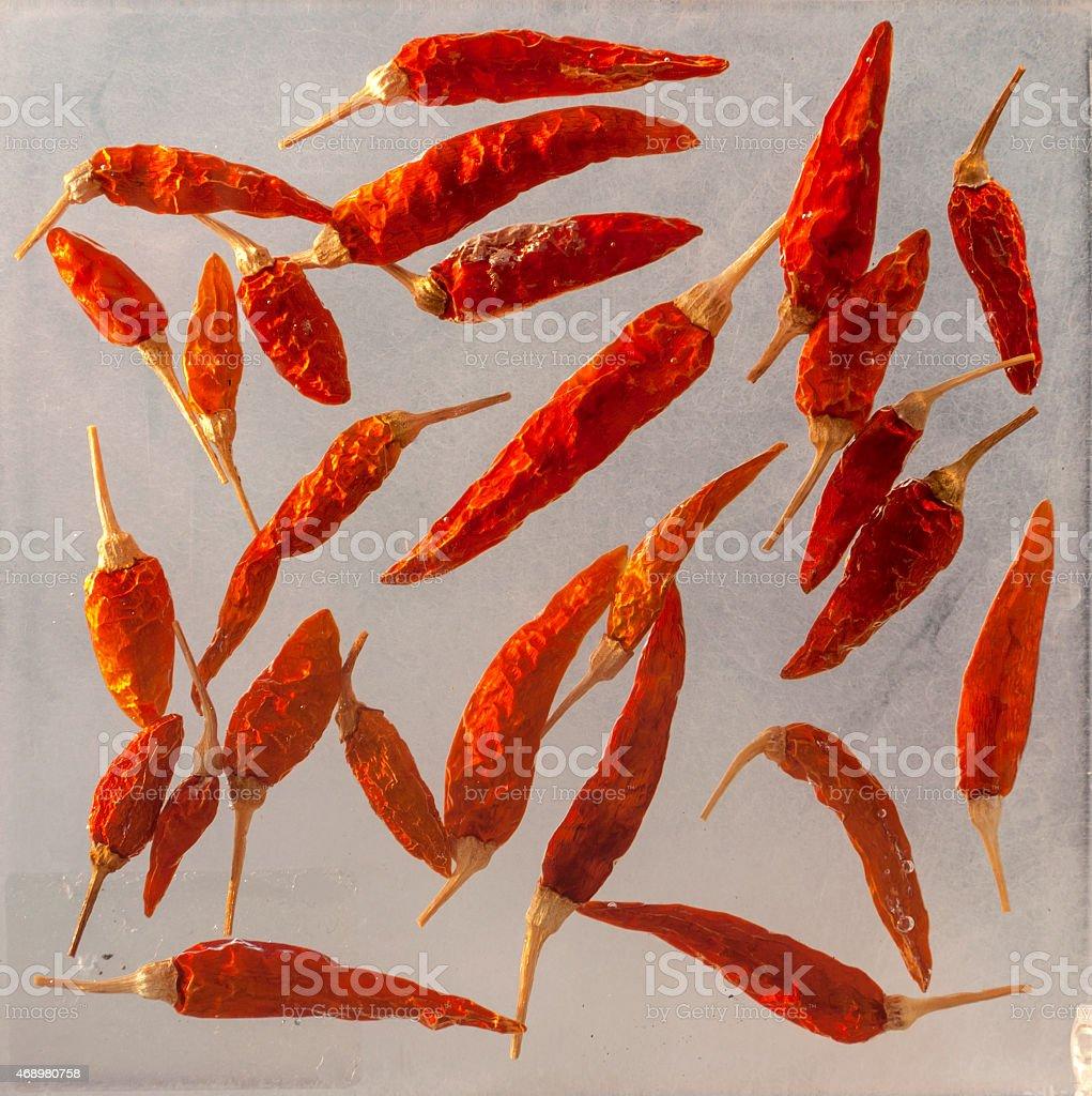 Dry chili royalty-free stock vector art