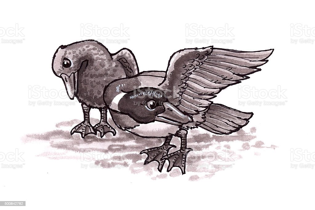 Ducks (Comic Lizenzfreies vektor illustration