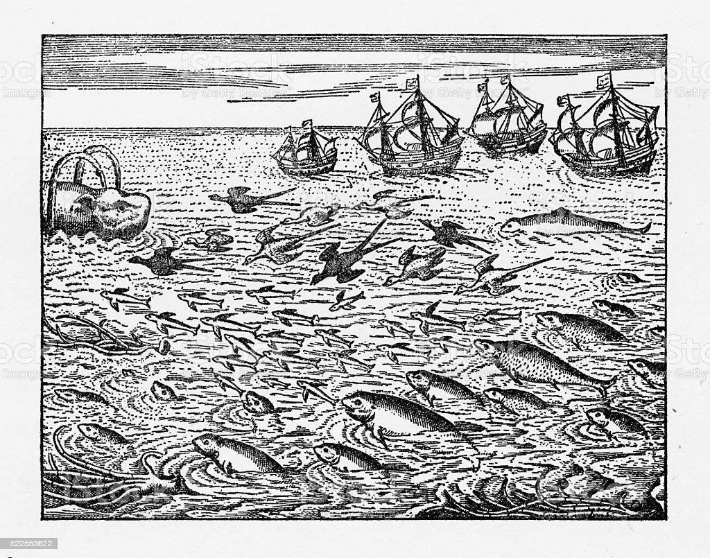 Dutch Navigators Encountering Flying Fish Illustration vector art illustration