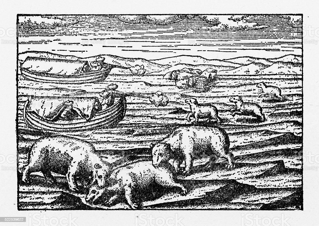 Dutch Navigators Shooting Polar Bears in the Northeast Passage Illustration vector art illustration