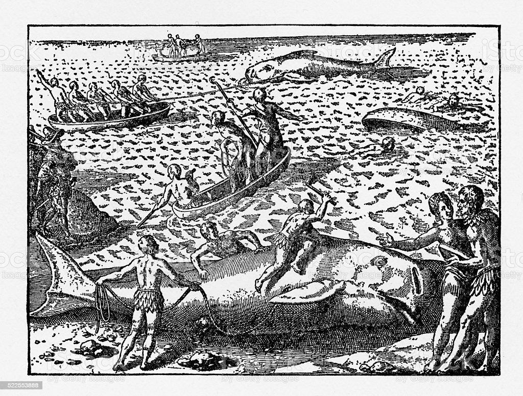 Dutch Navigators Whaling on Santa Maria Island Illustration vector art illustration